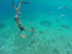 Bajo el mar III